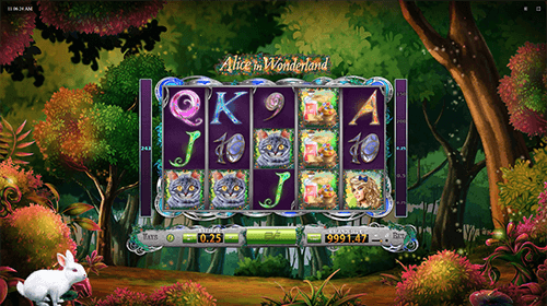 "The BF Games slot ""Alice in Wonderland"" has a 5x3 reel layout"