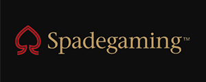 Spadegaming was established in 2007 by a group of engineers and designers